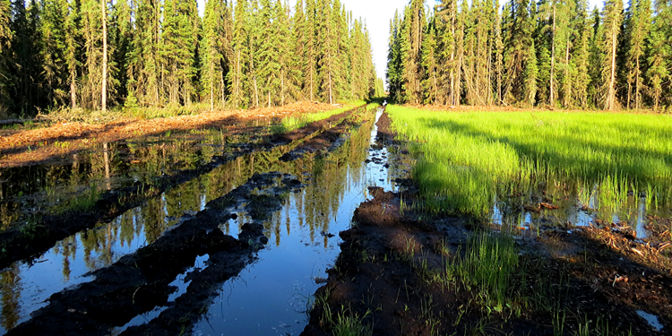 Natural resource projects often require crossing unstable terrain, weak subgrades, wetlands, muskeg, or high water tabled areas.